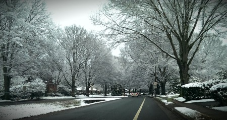 Charlotte in Snow: Myers Park Awaits Another Round